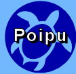 Local Poipu Info